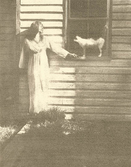 Woman with Cat in the Window