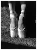 Stanko Abadžic - The Ballet Slippers Click for more Images