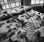 Arthur Tress - Making Leaves, Cold Spring, NY Click for more Images